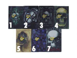 3117-SK1 Plastic Cigarette Case, Skull Design