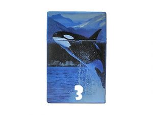 D18 Plastic Cigarette Case, Ocean Design