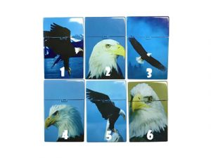 3116-D12 Plastic Cigarette Case, Eagle Design