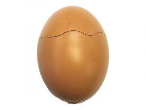 NL1635 Egg Lighter